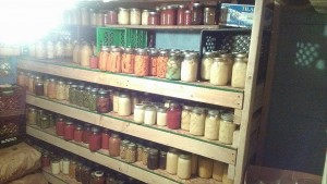 A view of some of my canning shelves
