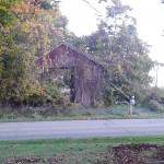 The old barn across the street