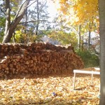 A view of the rabbitry, and one of our woodpiles