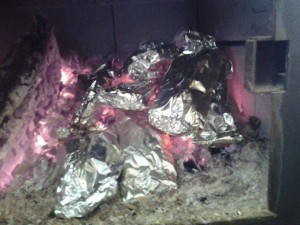 Tin foil meals in the firebox