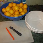 Tools of the trade:  Citrus peeler and zester