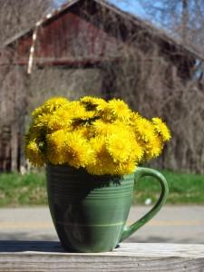 "A mug of ""dandies"" for mom"