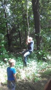 Swinging in the vines