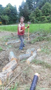 Chopping branches off tree we cut down.
