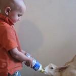 "Bottle feeding the ""baby"""