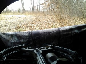 One of the views from the blind