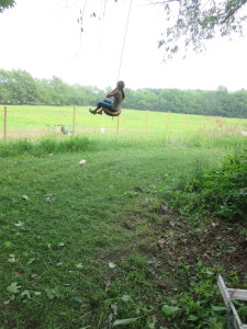 Dad made a swing!